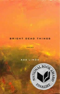 alimon_brightdeadthings