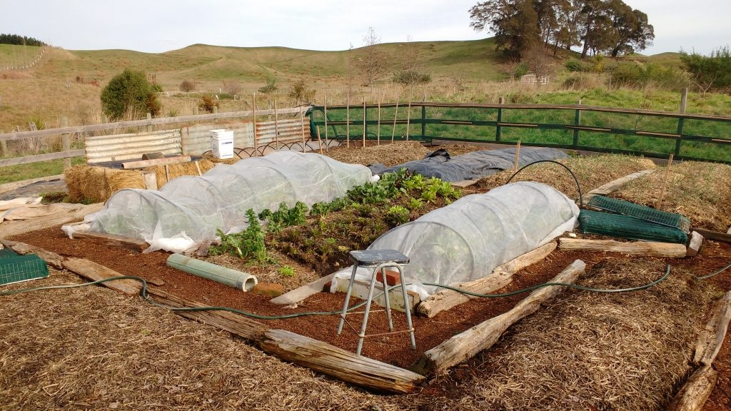 "Layered Straw Bale ""Lasagna"" Veggie Garden in Winter"